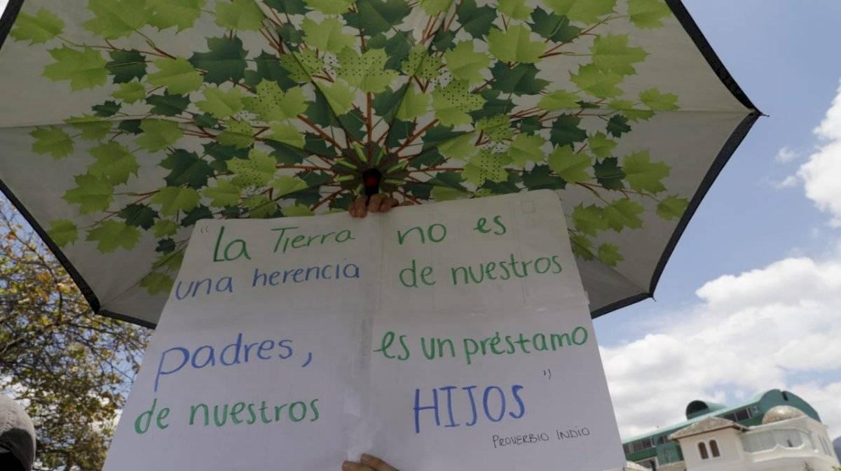 """Fridays For Future: Ecuatorianos reclaman que """"hay más plástico que sentido común"""" en la Tierra API"""