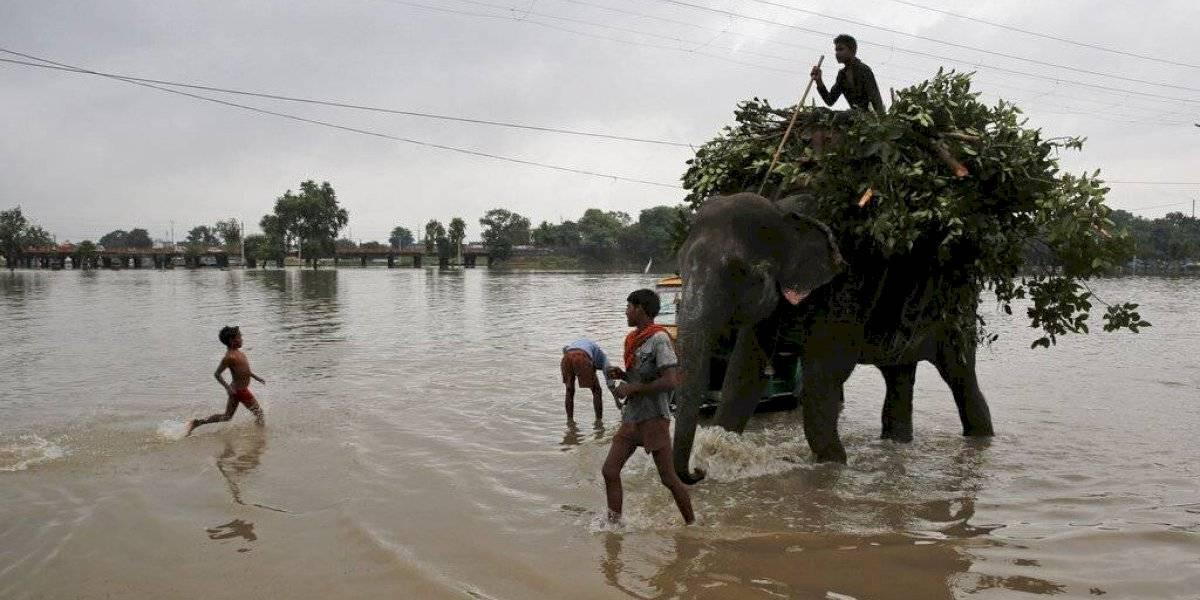 Fuertes lluvias dejan más de 50 víctimas fatales en la India