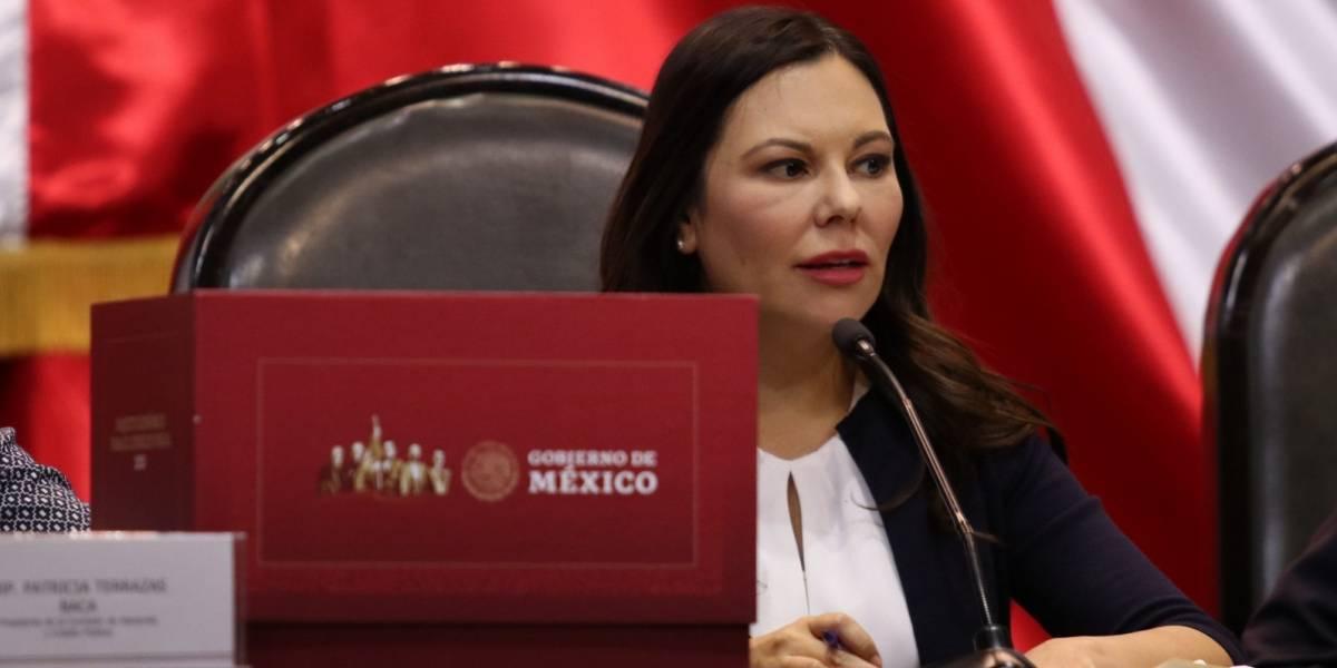 """Acusa PAN """"caja chica"""" del gobierno federal en paquete económico 2020"""