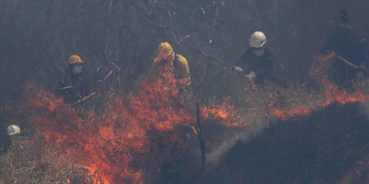 En Bolivia se han quemado 5 millones 300 mil hectáreas