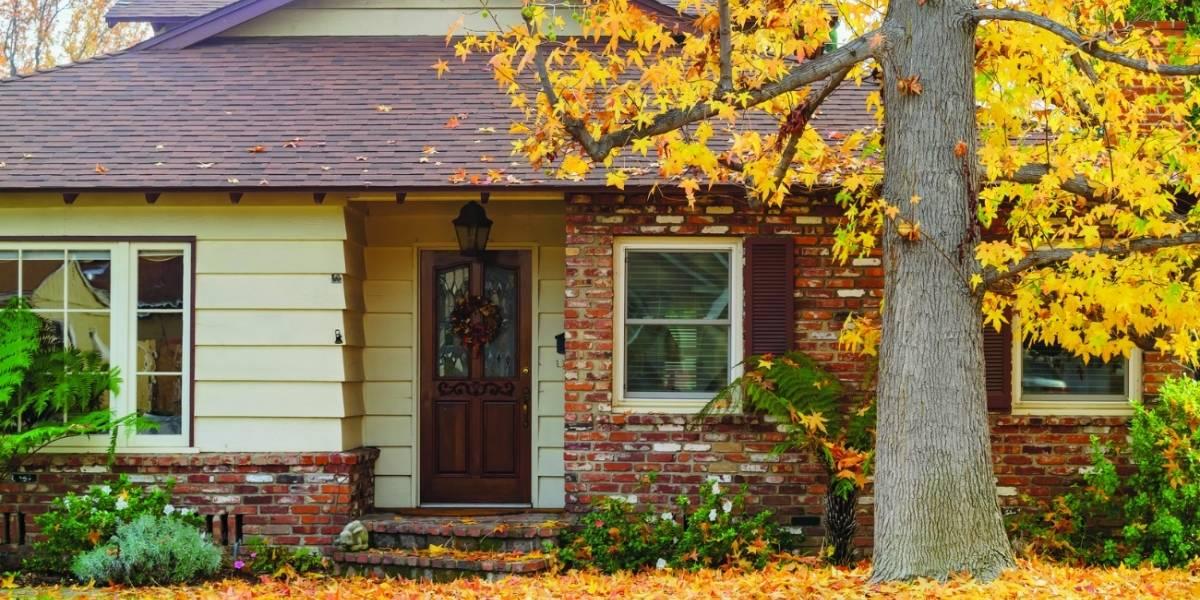 Consejos para cuidar tu jardín durante el otoño