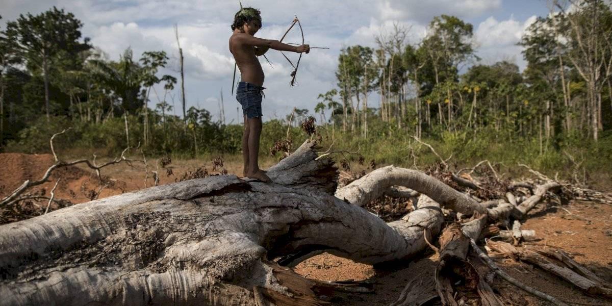 Flechas y celulares: la vida de los tembé en la Amazonía