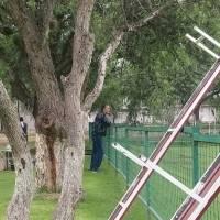 Edgardo Bauza, nuevo asesor deportivo de Liga de Quito llegó al complejo a observar la práctica