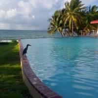 Alta tasa de ocupación en los hoteles de la isla para el fin de semana del 4 de julio