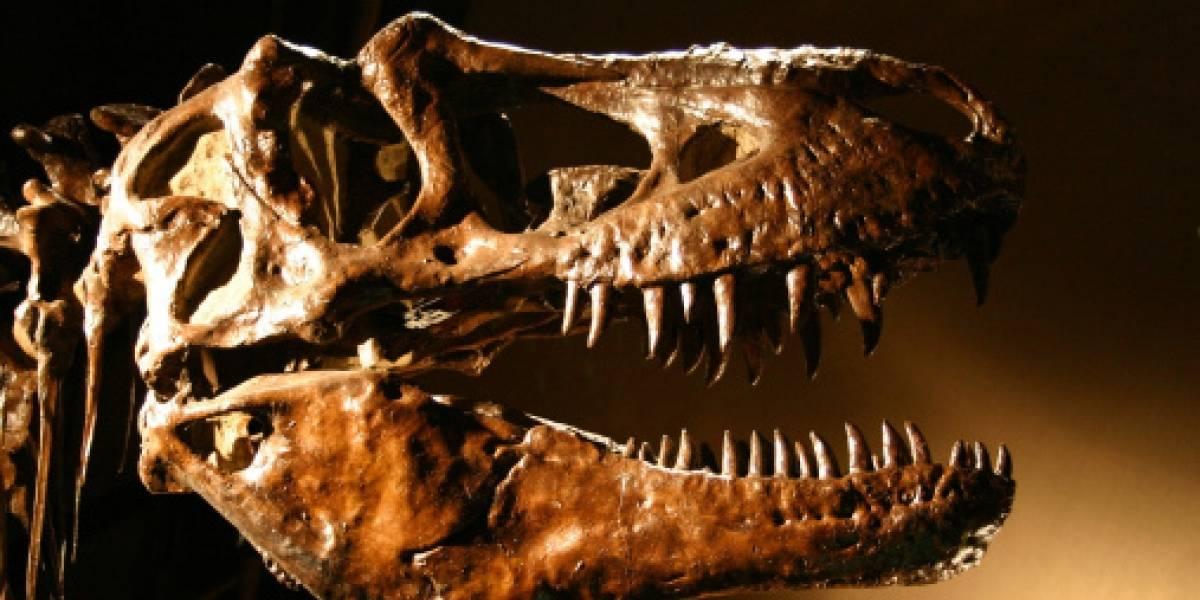 Tenía brazos cortos pero era realmente peligroso: la bestia prehistórica que podría haber destrozado un auto de un solo mordisco