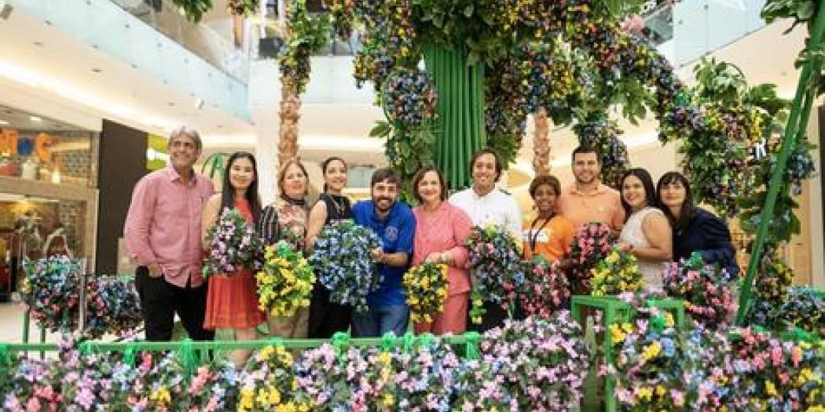 #TeVimosEn: Árbol de la Esperanza de Ágora Mall le pone rostro a los más necesitados