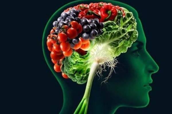 cérebro - alimentação