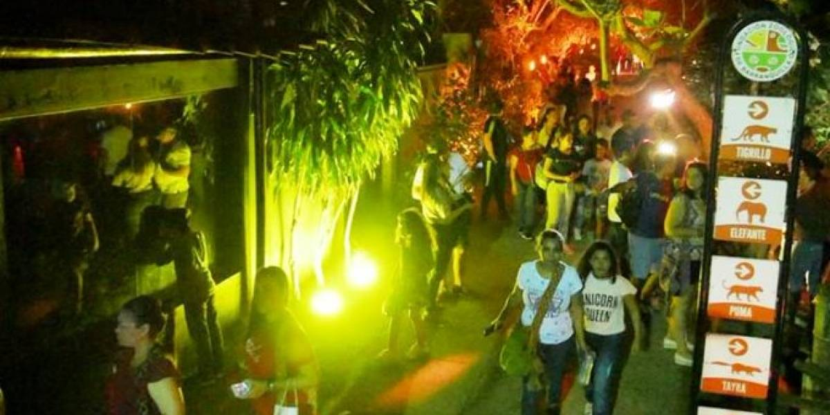 Habrá Safari Nocturno en el Zoológico de Barranquilla