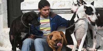 Bendición de mascotas en el Cerrito del Carmen