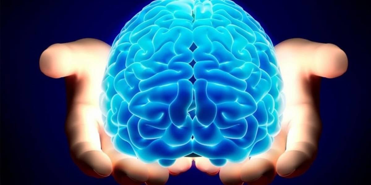 Coma estes 5 alimentos para melhorar sua memória