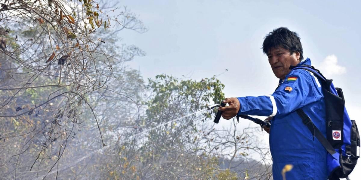 """""""La posibilidad que pierda es real"""": Evo Morales ya """"no está de moda"""" entre los jóvenes en Bolivia y se gana las críticas tras incendio en el Amazonas"""