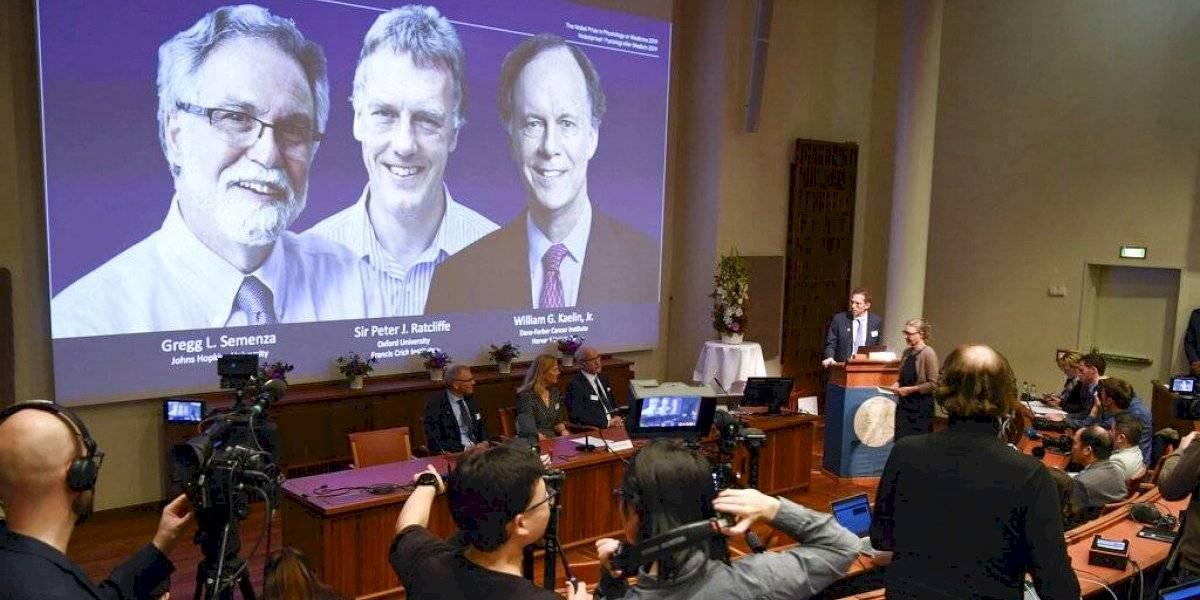 Nobel de medicina premia la investigación celular