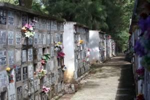 Pazé Cemitérios São Paulo