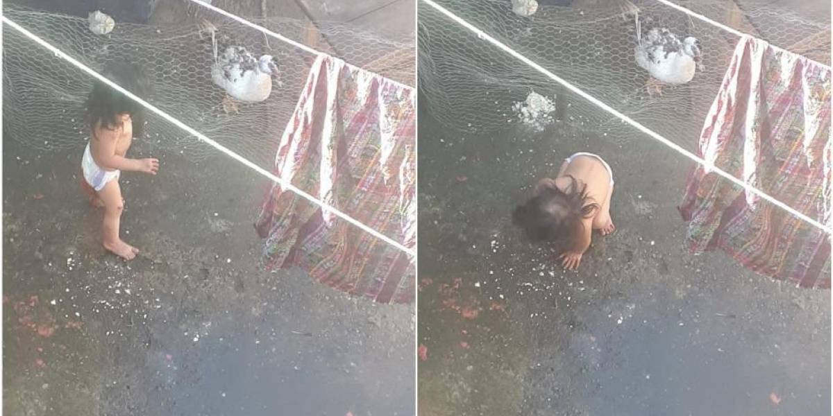 PGN asigna familia temporal a la niña que fue rescatada de una terraza en Mixco