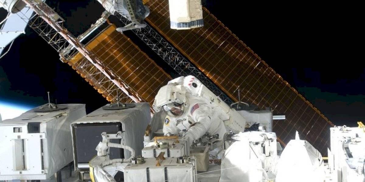 """Igual se quejaron del sabor: astronautas hicieron """"crecer"""" carne en el espacio por primera vez en la historia"""