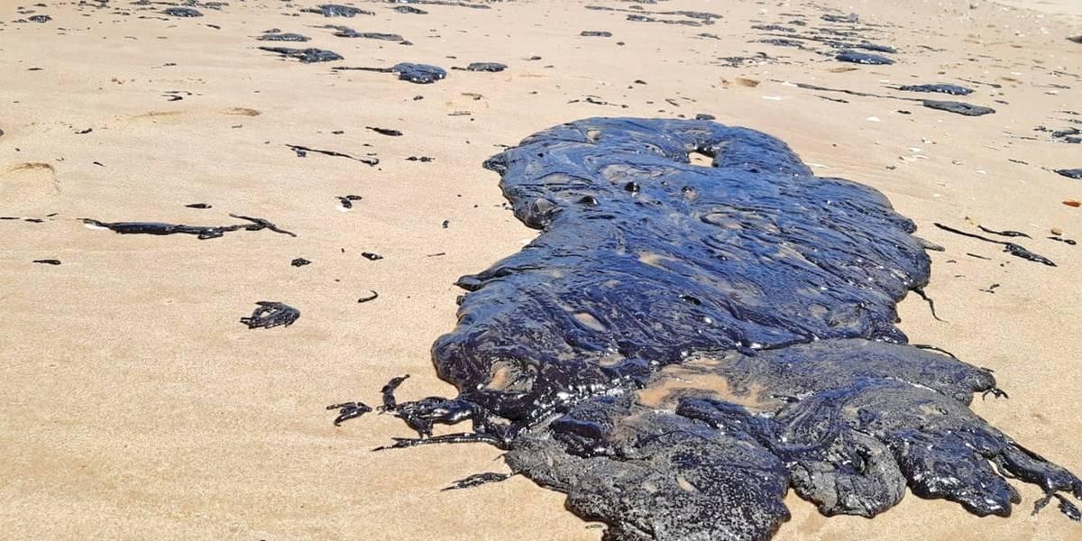 Manchas de óleo atingem a foz do rio São Francisco