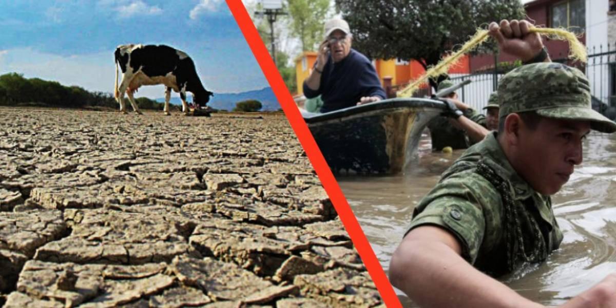 México: Se comienzan a ver los estragos del calentamiento global