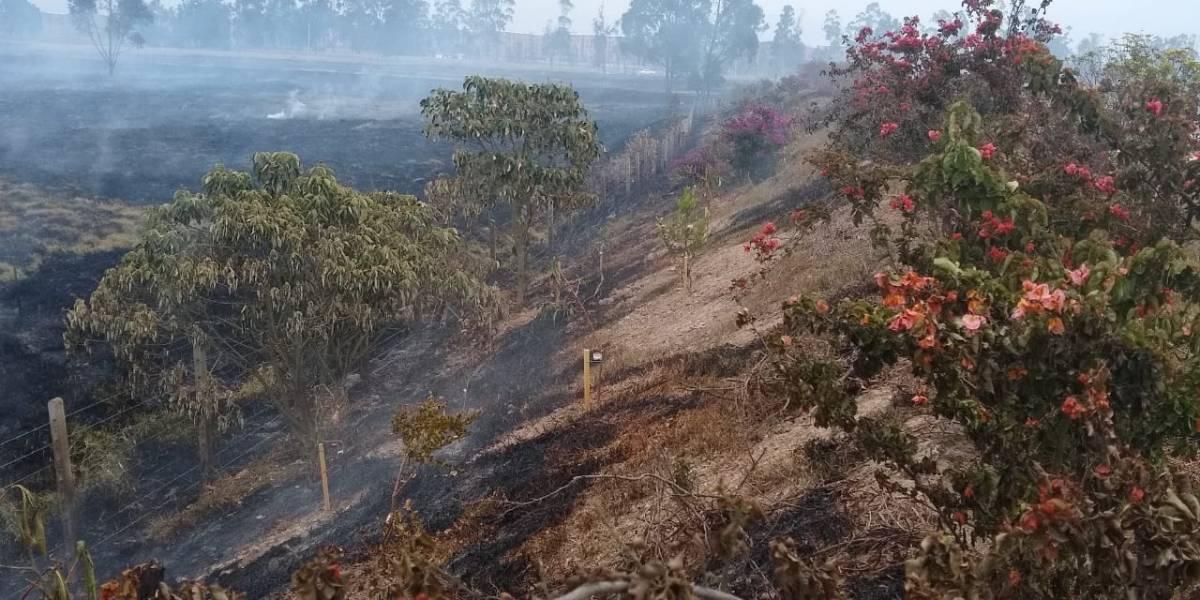 Incendio en ronda del río Bogotá afectó más de 15 hectáreas