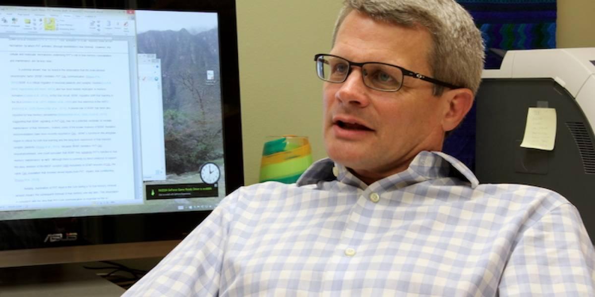 UPR y Universidad de Penn State descubren gen que repara tejido cerebral luego de un derrame cerebral