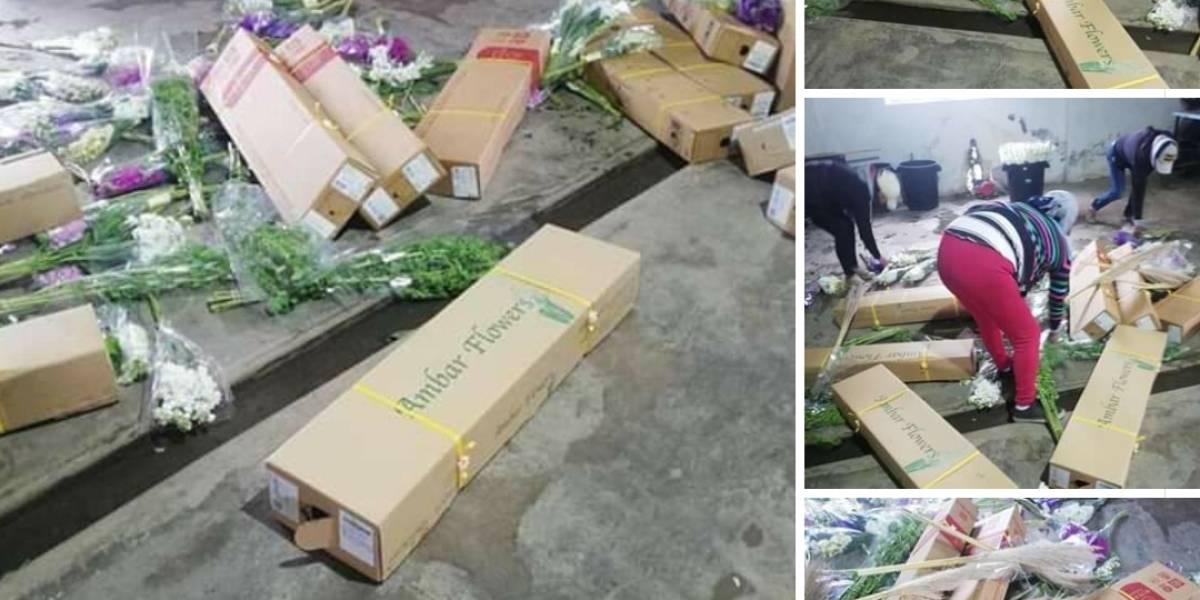 Expoflores se declara en emergencia ante la toma violenta de fincas
