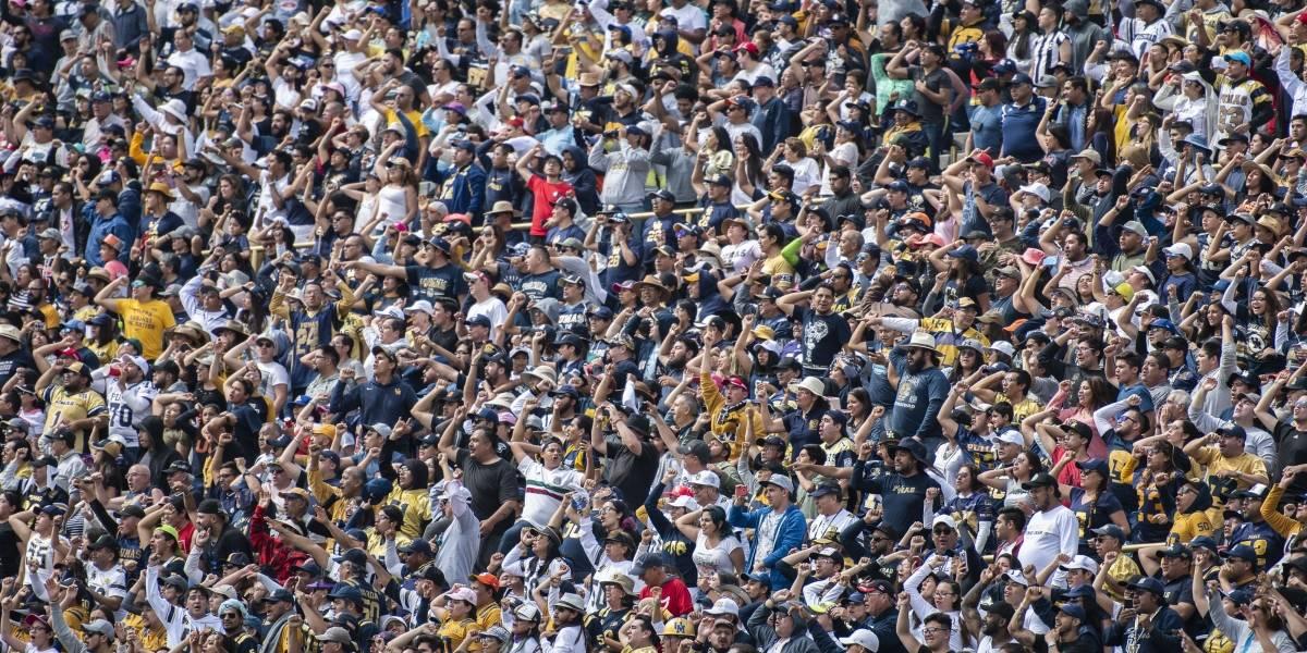 VIDEO: Aficionados de Pumas golpean a seguidor de los Burros Blancos