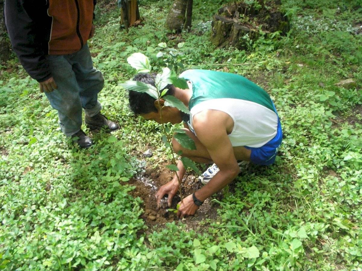 Carrera ecológica por el cerro Alux