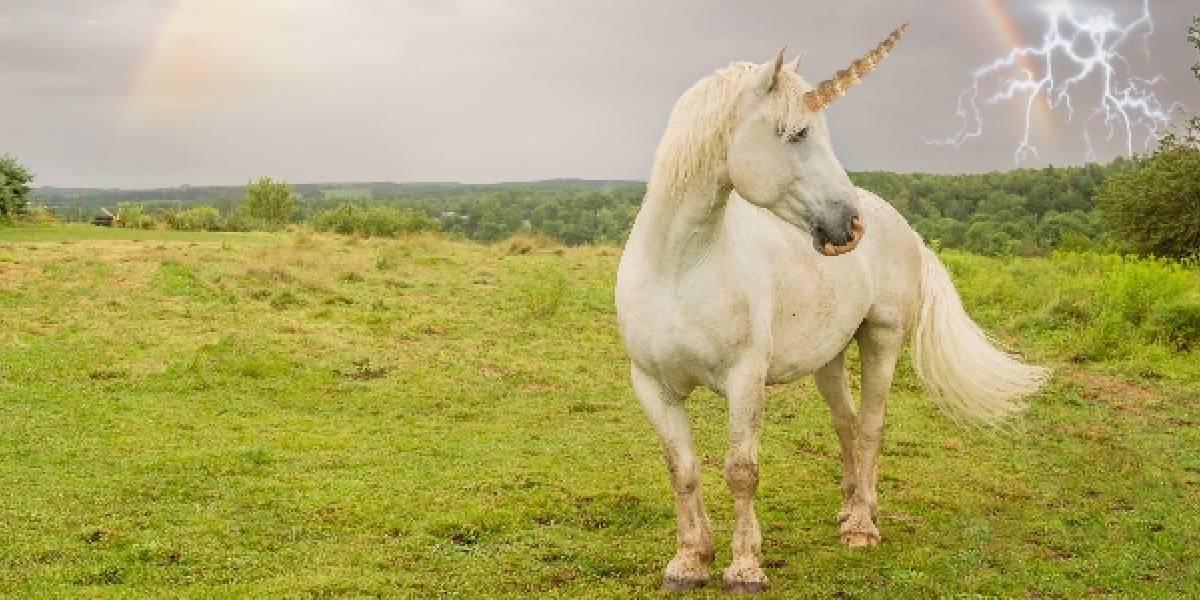 """Empresas """"unicornio"""": ¿Por qué se llaman así?"""