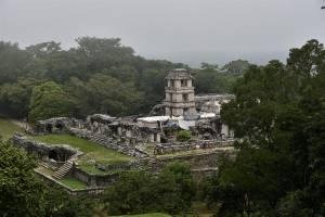 Ruinas en Palenque