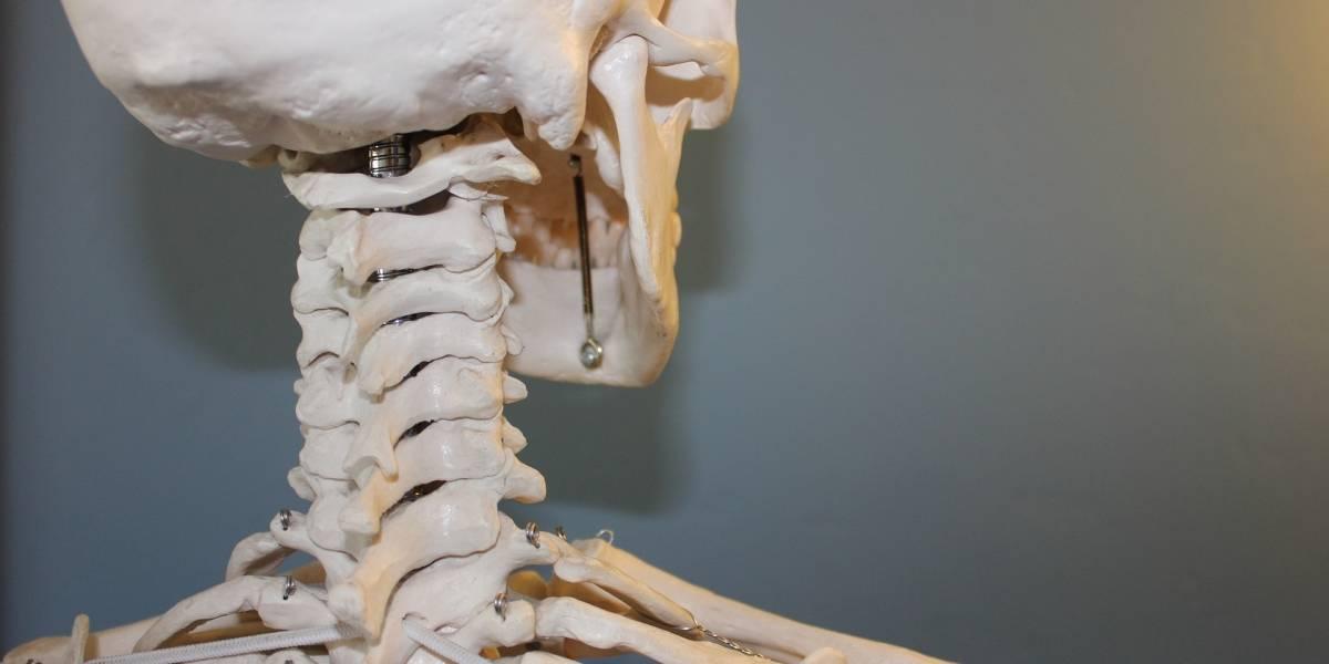 Hospital italiano faz primeiro transplante de vértebra na história