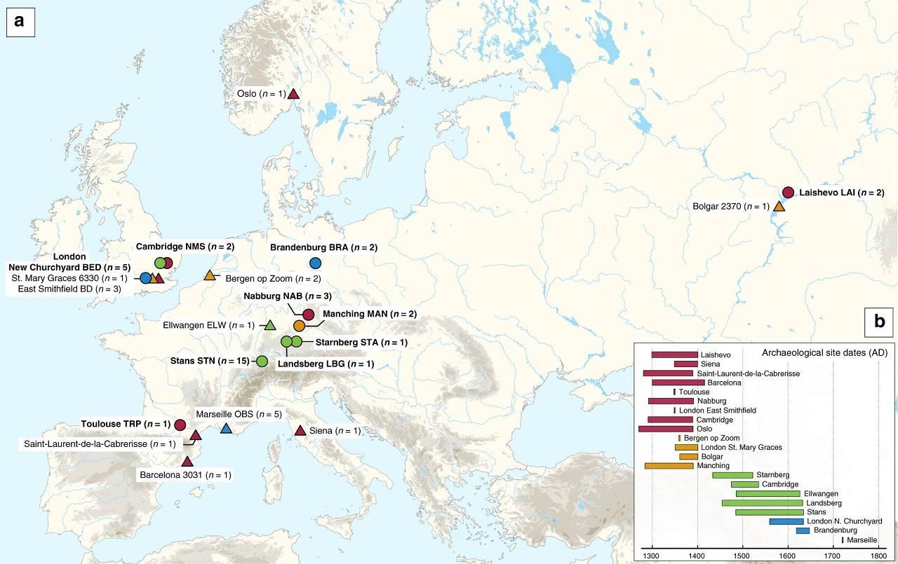 Científicos identifican la cepa de la Peste Negra que arrasó Europa
