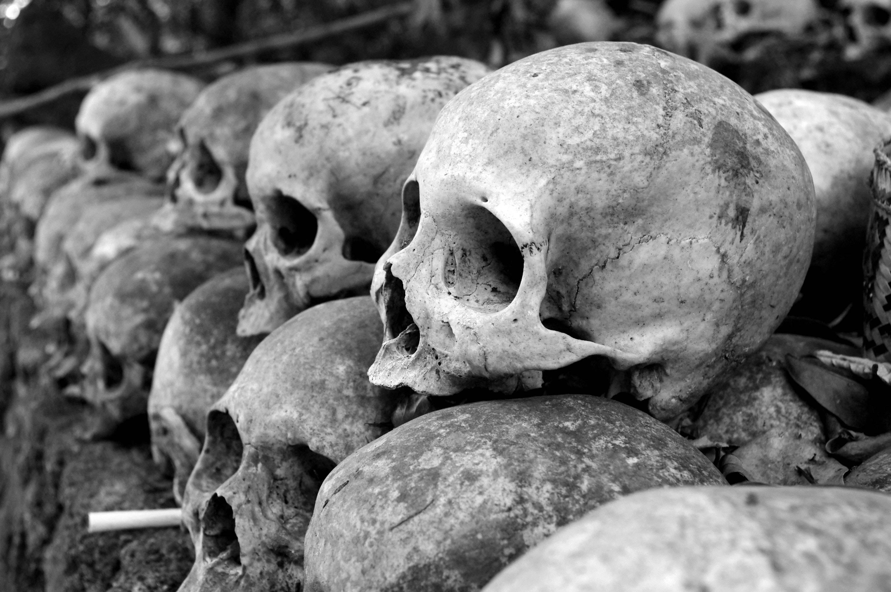 Pandemias: esta es la verdadera razón por la que existen y son culpa del humano