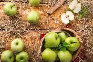 Batido de maçã verde pode acelerar o metabolismo e ajudar a emagrecer; confira a receita