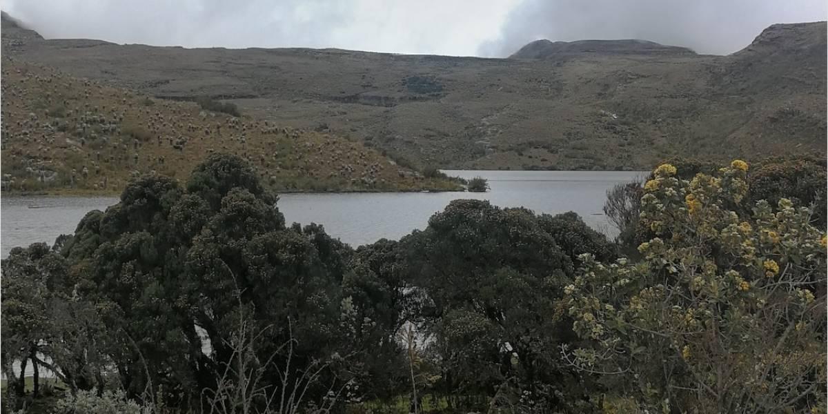 La Bogotá rural, reto para cerrar la brecha