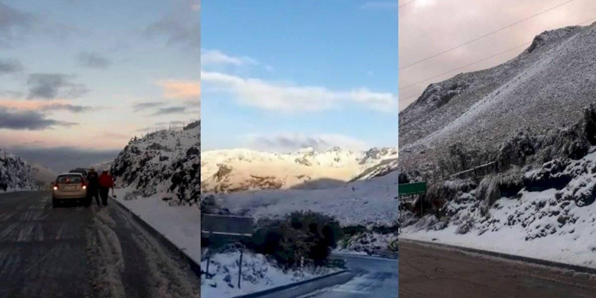 Azuay: El Cajas amaneció cubierto con nieve (videos)