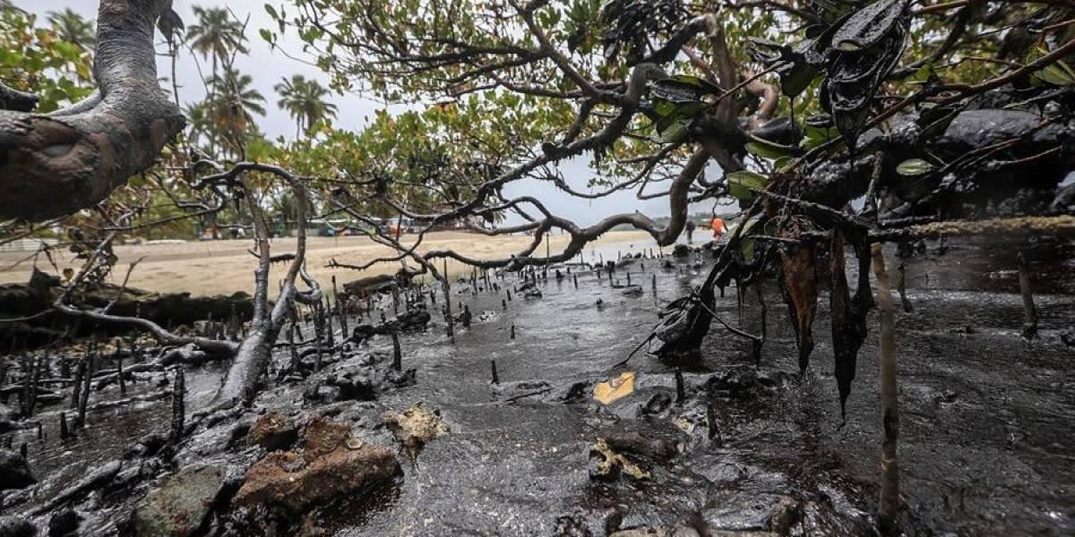Emergencia ambiental en Brasil por derrame de petróleo en playas