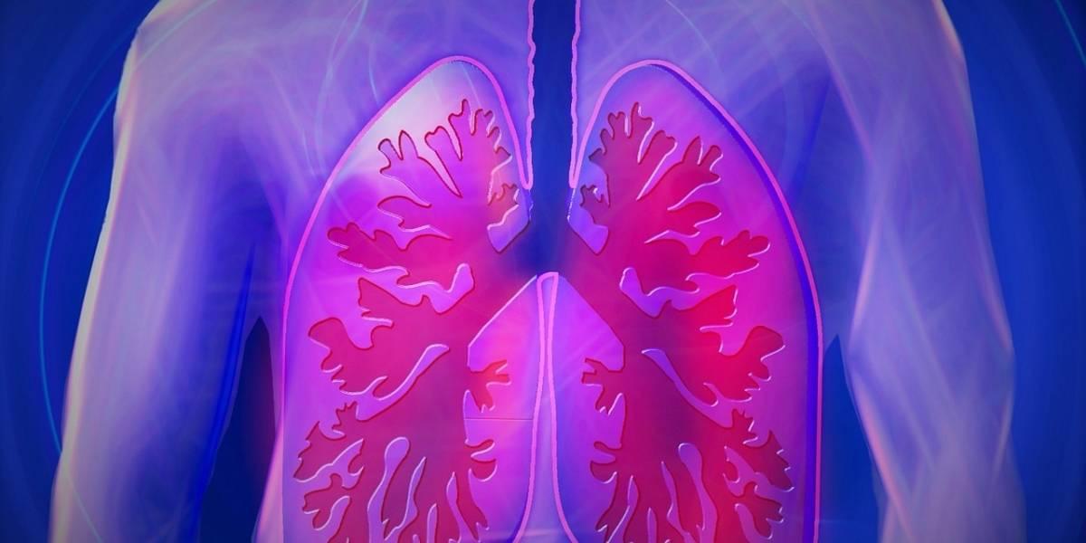 La grasa en los pulmones está detrás del asma en obesos
