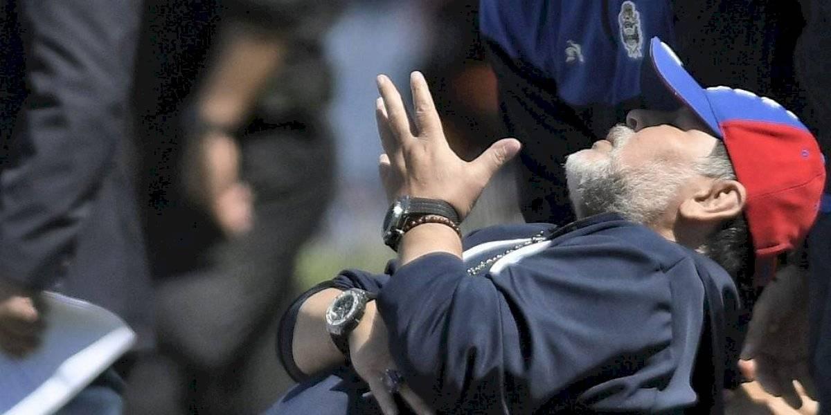 VIDEO. Mascota de Maradona causa furor en las redes sociales