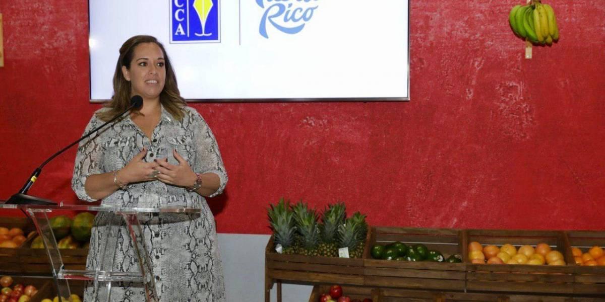 Turismo evaluará posibilidad de aumento de fondos para el DMO