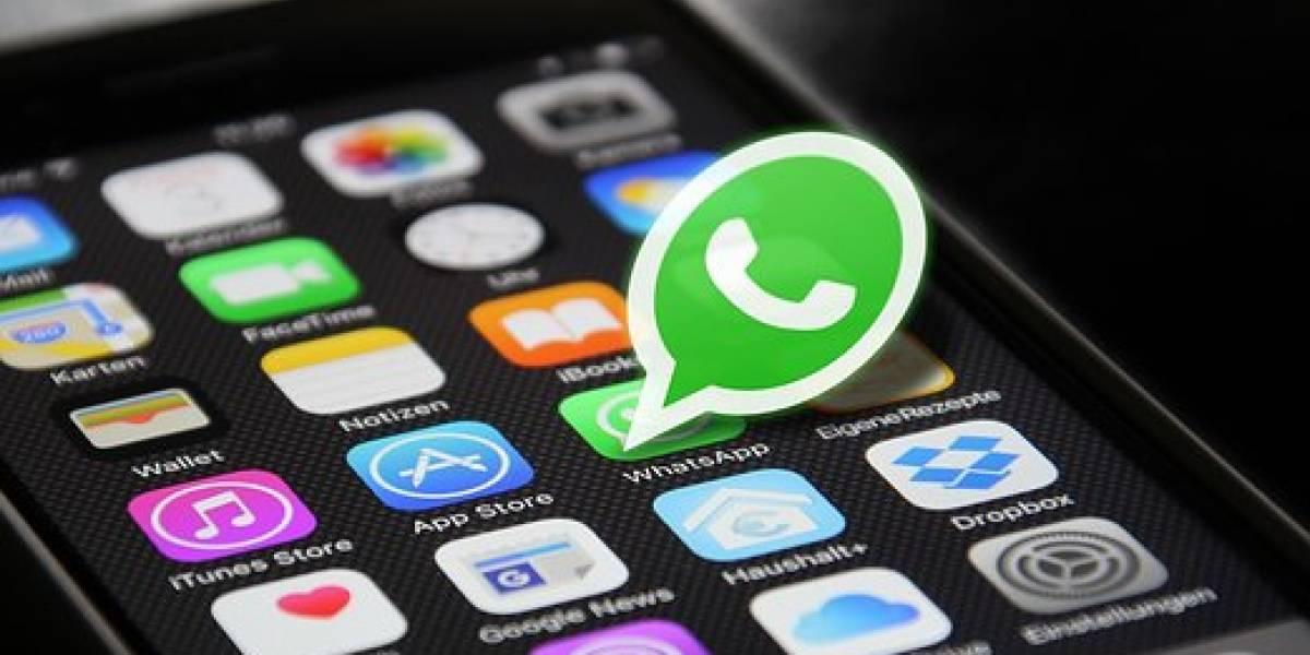 Así puedes colocar WhatsApp en modo oscuro y en cualquier móvil