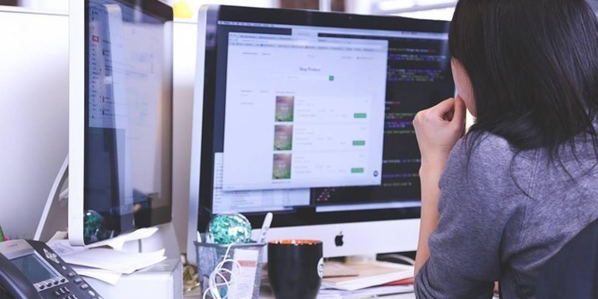 Ayudarán a micro y pequeñas empresas a crear su sitios web