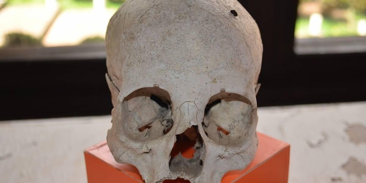 """De terror: En México encontraron un altar con restos humanos resultado de """"sacrificios"""" al diablo por parte del narco"""
