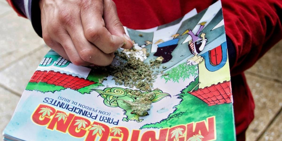 Propuesta del Senado sobre cannabis no reducirá inseguridad: MUCD