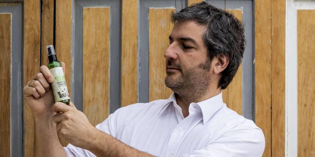 Emprendedor combate con plantas nativas las pulgas en las mascotas