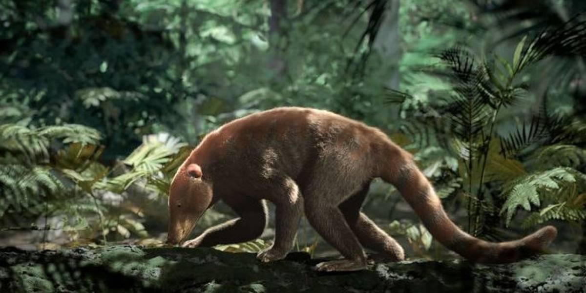 Así fue cómo resurgió la vida después de la extinción de los dinosaurios