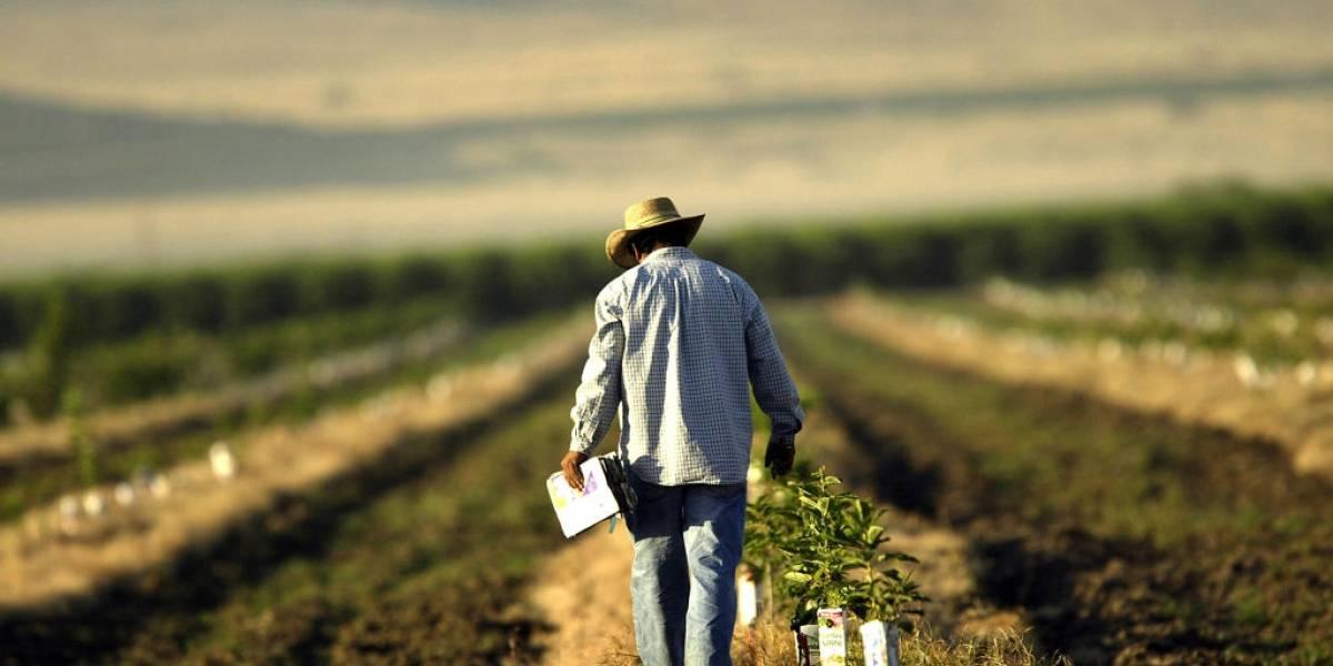AGU aponta fraude que 'esticava' fazenda no Pará em 300 kms