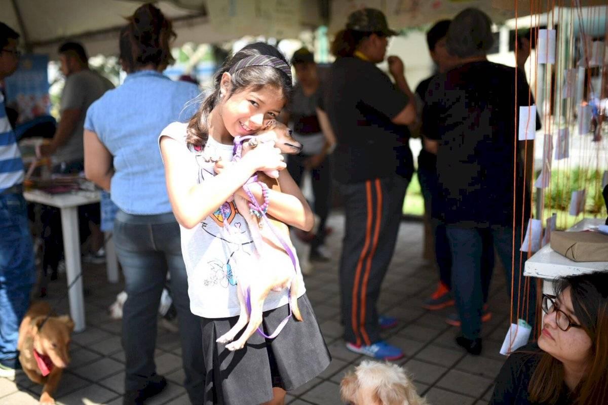 Una niña llevó a vacunar a su mascota al puesto de salud instalado en Pasos y Pedales. Foto: Oliver de Ros