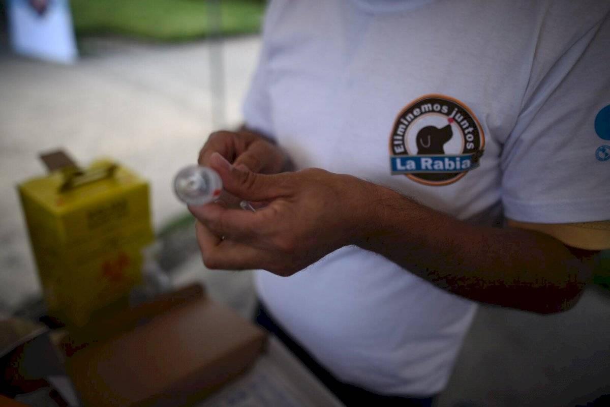 Vacunan contra la rabia