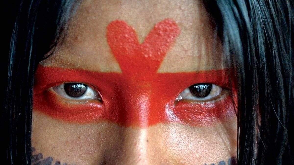 amazônia sociedade anônima (filme da mostra)