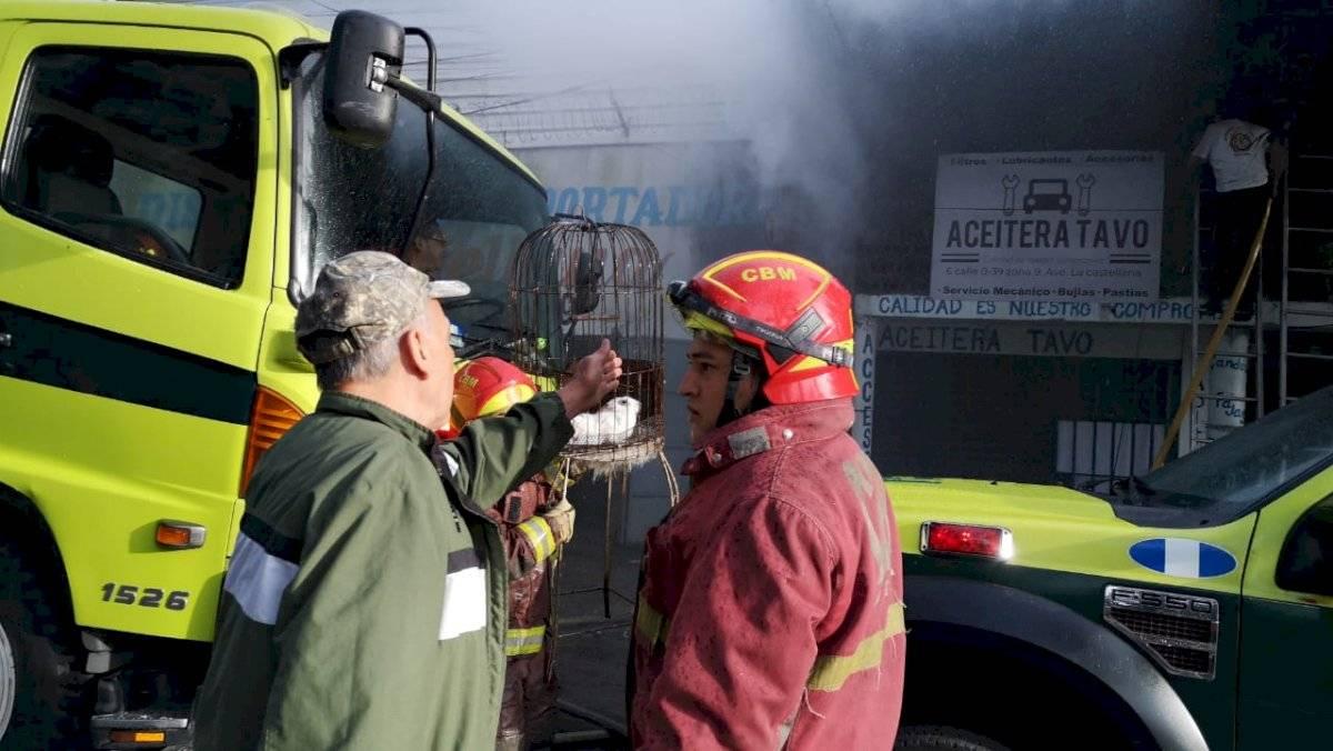 incendio en zona 9