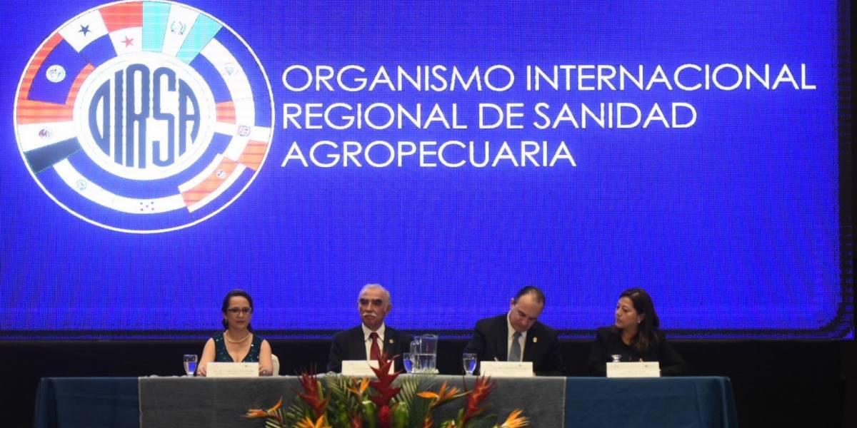 Conmemoran el Día Regional de la Sanidad Agropecuaria